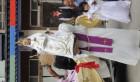 Pré Attaché Cadburys Violet Satin Garçons Cravate Âge 4-7 Enfants Cravate Slim Fine Skinny Cravate